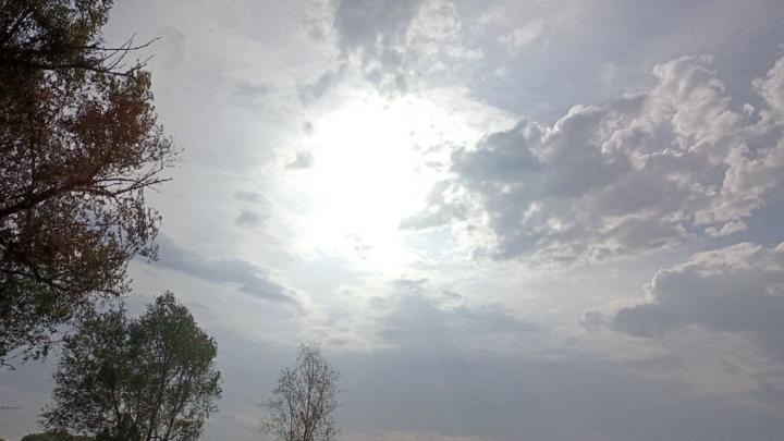 Ветреный четверг обещают в Саратове