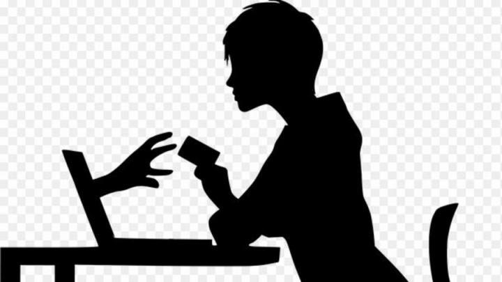 Двое жителей Энгельса стали жертвами интернет-мошенников