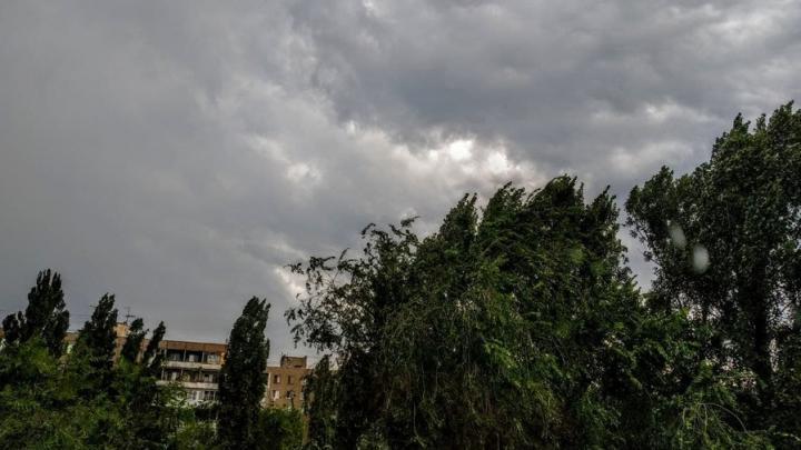 Сильный ветер бушует в Саратовской области