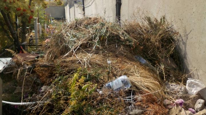 Саратовцы возмущены мусором на Старом Увекском кладбище