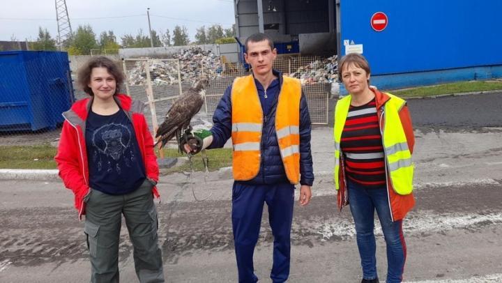 На энгельсском мусоросортировочном комплексе АО «Ситиматик» появятся собственные специалисты по биорепеллентации