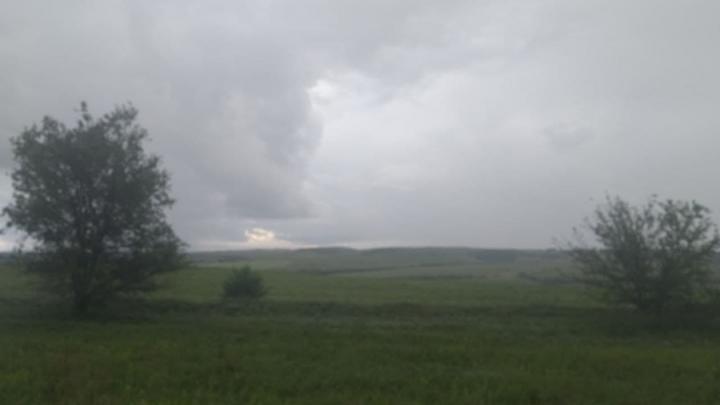 Туман и дождь в Саратовской области