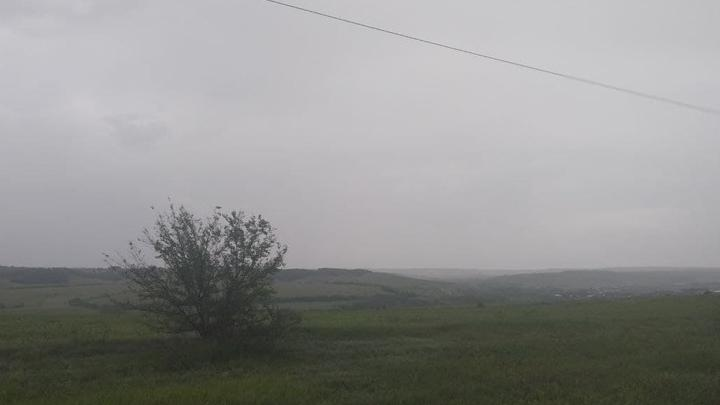 Дожди и туман прогнозируют в Саратовской области
