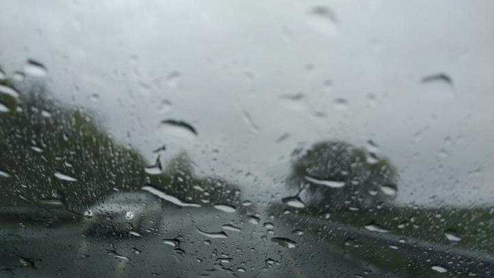 Сильный дождь с ветром надвигаются на Саратов