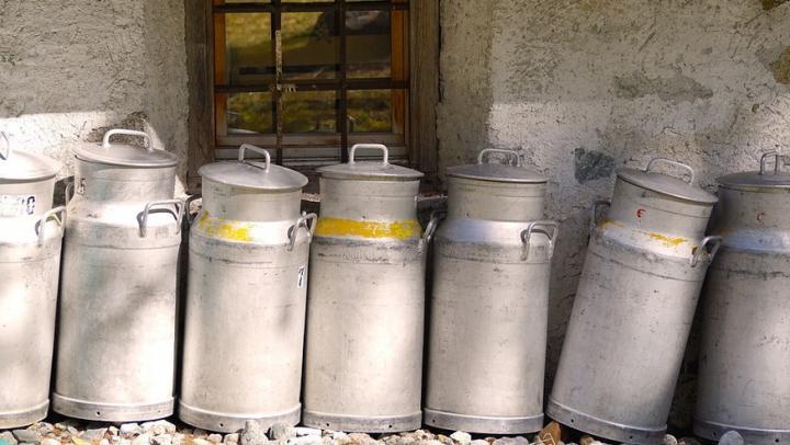 Шесть тонн просроченного молока не дошло до покупателей в Саратовской области