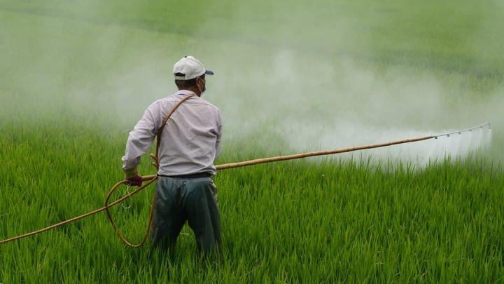 Четверых фермеров оштрафовали за неправильное обращение с пестицидами