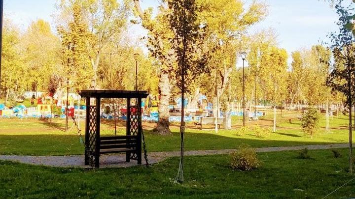 Морозная ночь и солнечный день в Саратовской области
