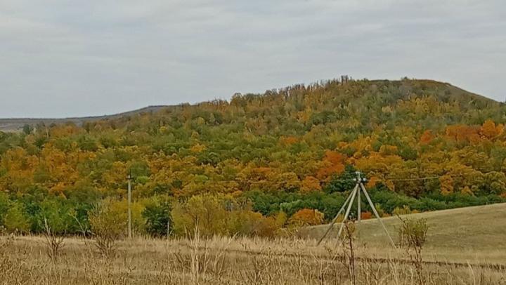На два градуса выше климатической нормы в Саратовской области
