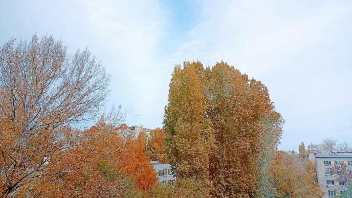 Погода на выходные в Саратовской области: дождь будет чередоваться с солнцем
