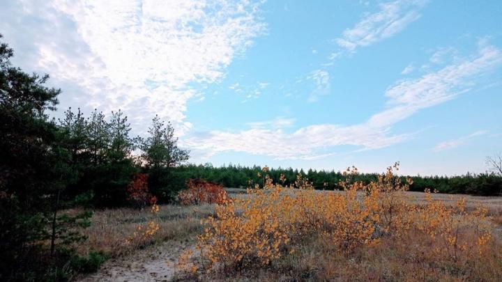 В Саратовской области еще тепло: до +14