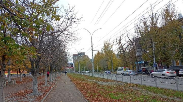 До +18 градусов в Саратовской области