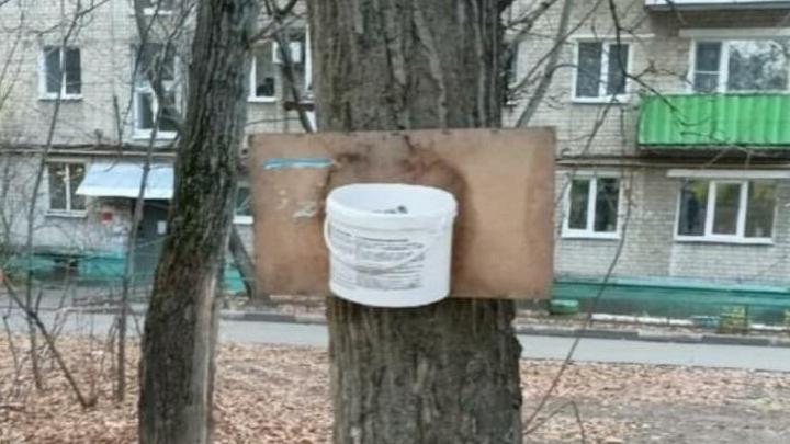 Жителям Заводского района заменят ведерко с дощечкой на настоящую баскетбольную корзину