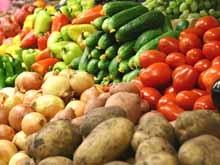 В Саратове состоялась первая сельскохозяйственная ярмарка сезона
