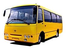 В муниципальные районы поставят 28 школьных автобусов