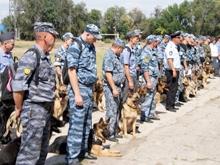 В Саратове прошли соревнования среди полицейских-кинологов