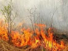 На Кумыске сгорел автомобиль с травой