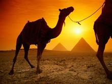 Минтуризма области следит за пребыванием саратовцев в Египте