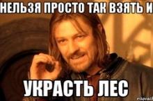 """Виткин: """"Наша область - не Кировлес"""""""