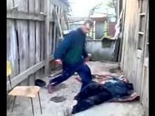 Дележ территории между алкоголиками и бомжом кончился убийством