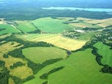 Область урезает расходы на растениеводство вдвое