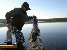 Сельскому рыбаку с сетью грозит восемь лет тюрьмы