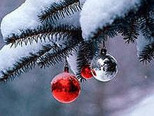 Полпред Ингушетии встретит Новый год в саратовском СИЗО