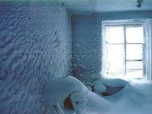 Вольчанка замерзла насмерть на собственной кухне