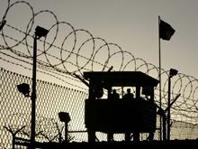 Журик не намерена расследовать случаи с пытками осужденных