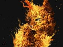На пожаре в частном доме сгорел человек