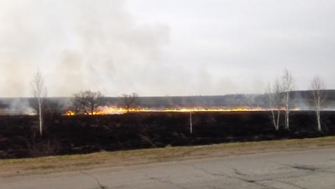 Вдоль трассы Саратов - Базарный Карабулак горит сухая трава. Видео