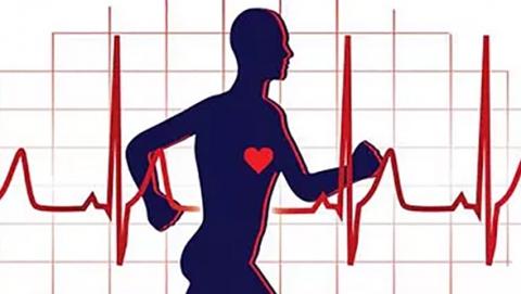 Ученые саратовских вузов разработали уникальный комплекс для диагностики сердца
