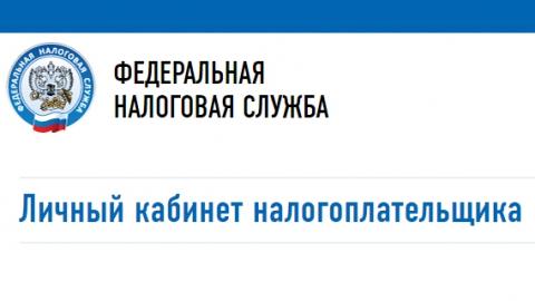 Налоговые органы Саратовской области приняли свыше девяти тысяч заявлений о льготах
