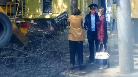 В Саратове женщина обняла дерево в знак протеста против варварской опиловки