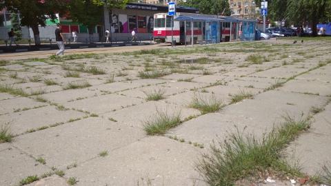Трамваи встали в Мирном переулке из-за ДТП