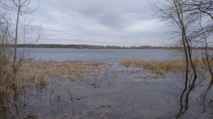 В Саратовской области вводится запрет на ловлю рыбы