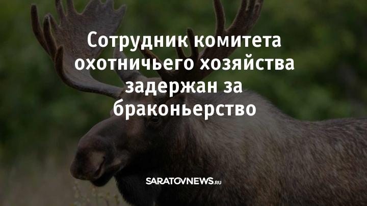www.saratovnews.ru