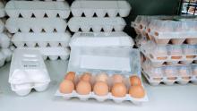 Саратовские чиновники обещают снизить цены на яйца