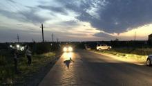 21-летний саратовец на «Гранте» сбил двух человек насмерть: полиция ищет свидетелей