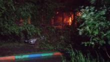 Ночью по Саратову пронеслась буря: снова деревья падали на машины
