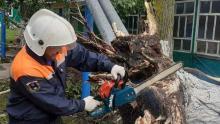 Более 12 тысяч домов в Саратовской области остались без электроэнергии в ночь урагана
