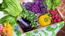 Незначительно подешевели овощи в Саратовской области